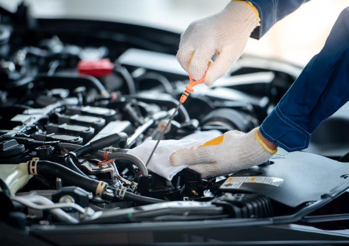 Car oil and fluid check
